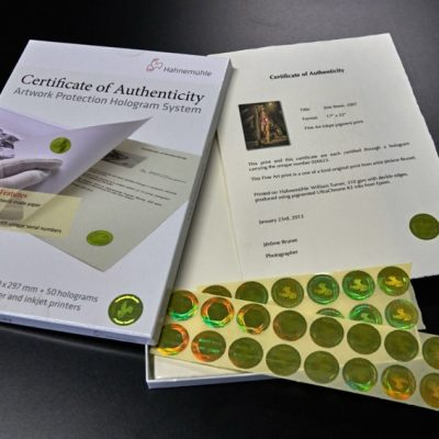 Certificate of Authenticity & Hologram System